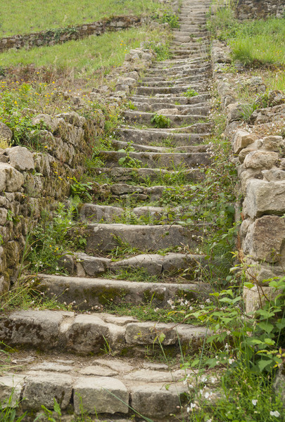 stairs at Saint-Michel tumulus Stock photo © prill