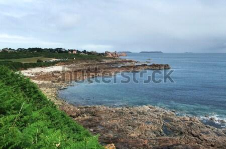 Etrafında manzara pembe granit sahil plaj Stok fotoğraf © prill