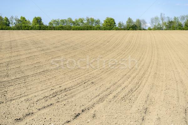 Ensoleillée agricole paysages domaine district sud Photo stock © prill