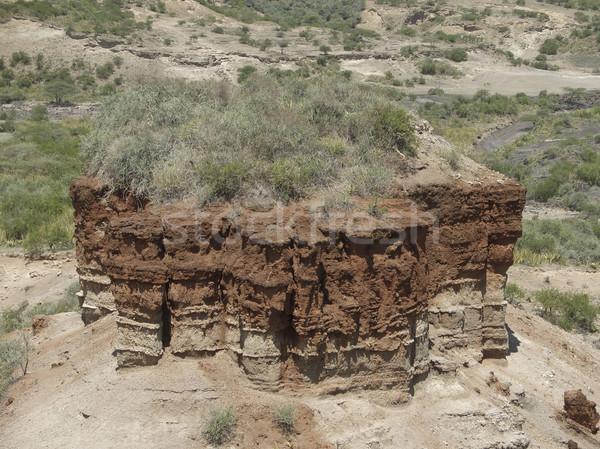 Olduvai Gorge detail Stock photo © prill