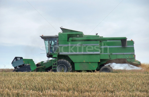 harvesting harvester on a crop field Stock photo © prill
