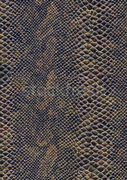 Réptil pele superfície quadro completo abstrato marrom Foto stock © prill