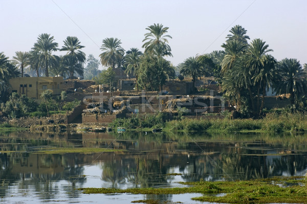 River Nile scenery between Aswan and Luxor Stock photo © prill
