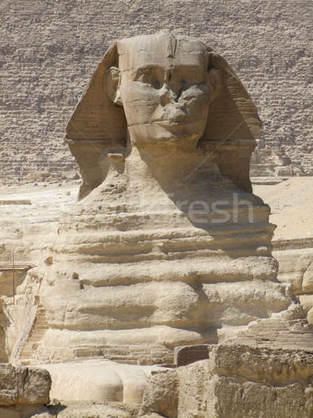 portrait of the Sphinx Stock photo © prill