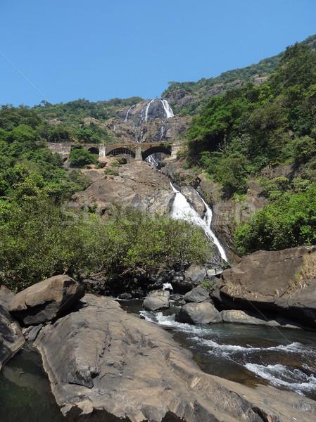 Bhagwan Mahaveer Sanctuary and Mollem National Park Stock photo © prill