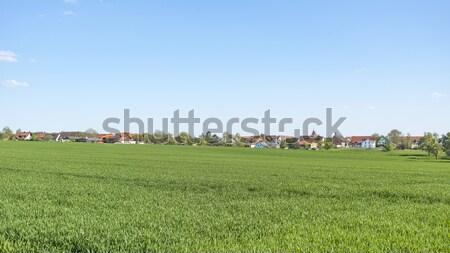 Stock photo: rural springtime scenery