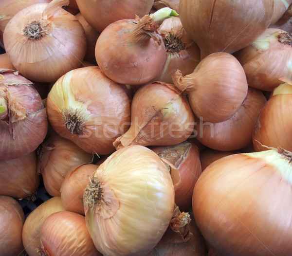 full frame onions background Stock photo © prill