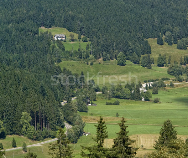 Black Forest aerial view Stock photo © prill