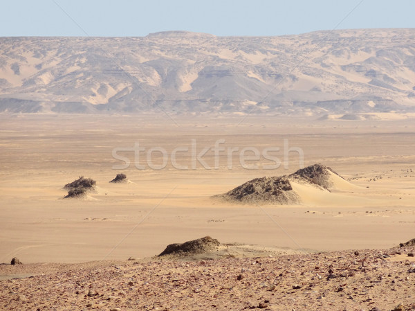 Autour désert paysages historique oasis Egypte Photo stock © prill