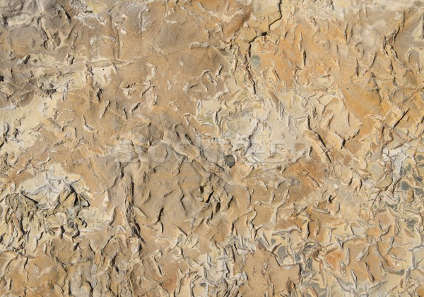 stone surface Stock photo © prill