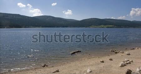 Schluchsee waterside scenery Stock photo © prill