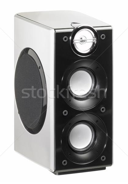 small loudspeaker Stock photo © prill