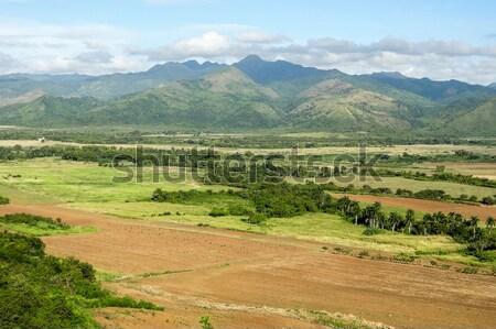 вокруг долины Куба тропические сцена острове Сток-фото © prill