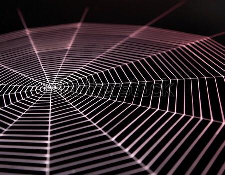 lurking metallic spider Stock photo © prill