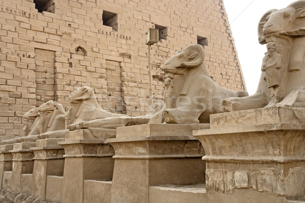 sphinxes at Precinct of Amun-Re Stock photo © prill