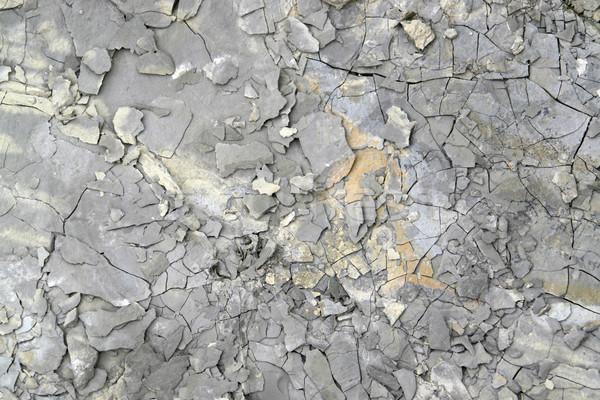 stone surface Stock photo © prill