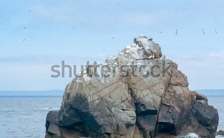 Kaya oluşumu yedi sahil detay deniz Stok fotoğraf © prill