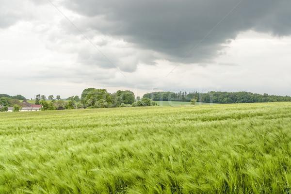 Tempestuoso rural primavera cenário agrícola em torno de Foto stock © prill