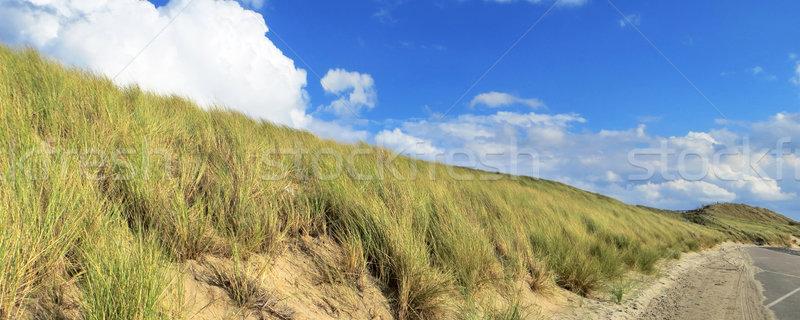 Nederland zonnige landschap strand zee zand Stockfoto © prill