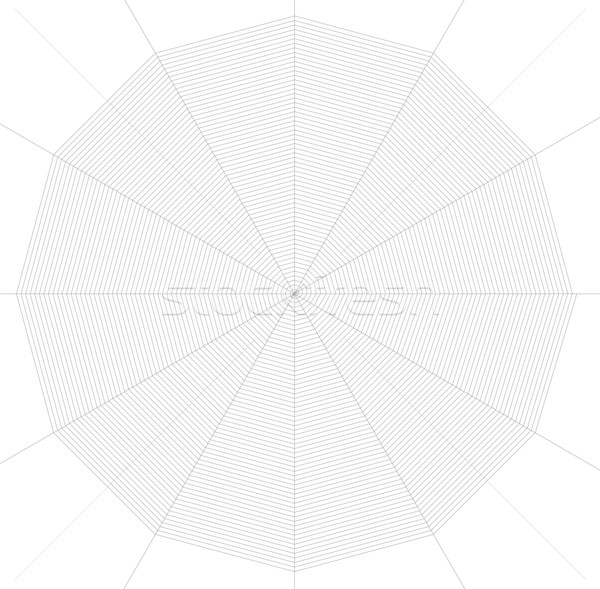 frontal spiderweb illustration Stock photo © prill