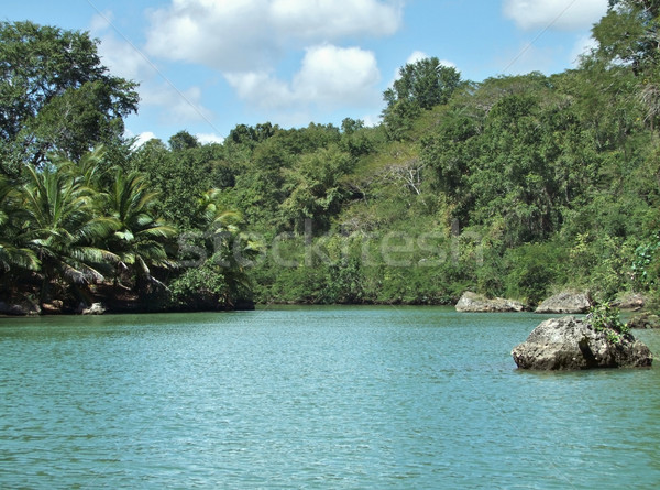 Dominican Republic waterside scenery Stock photo © prill