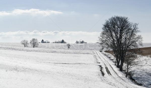 Hohenlohe at winter time Stock photo © prill