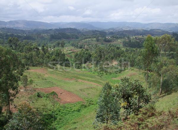 Virunga Mountains and clouded sky Stock photo © prill