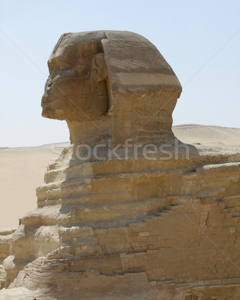 Sphinx detail Stock photo © prill