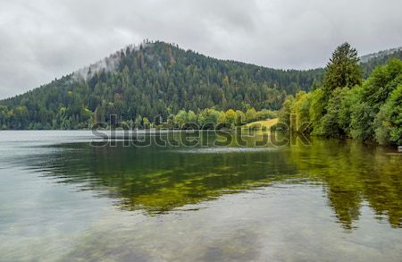 Schluchsee waterside scenery Stock photo © prill