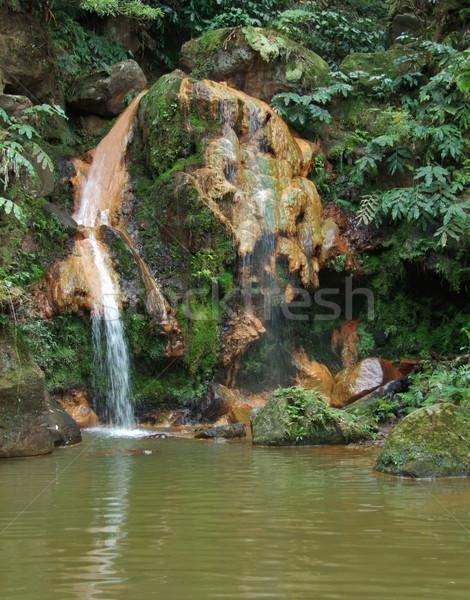 cascade at the Azores Stock photo © prill