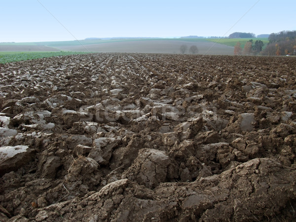 plowed field in rural ambiance Foto stock © prill