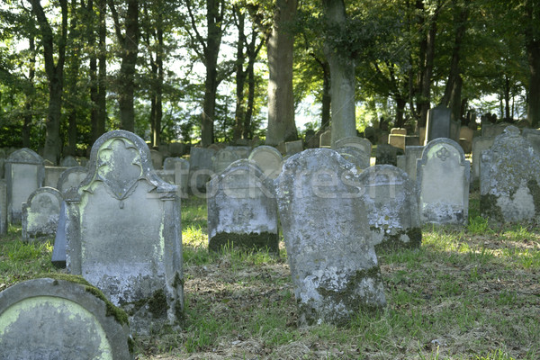 old jewish graveyard Stock photo © prill