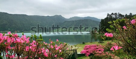 idyllic Azores scenery Stock photo © prill