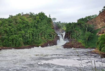 whitewater at the Murchison Falls Stock photo © prill