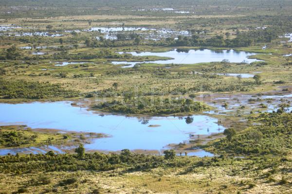 Okavango Delta Stock photo © prill