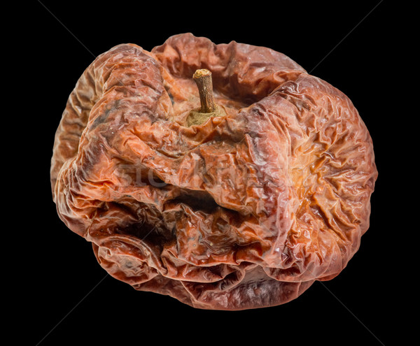 dry rotten apple Stock photo © prill