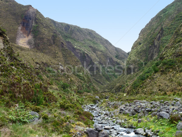 rocky landscape at the Azores Stock photo © prill