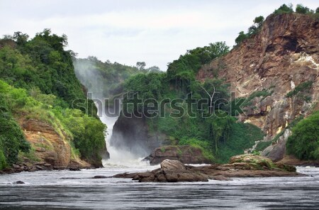 idyllic view around the Murchison Falls Stock photo © prill