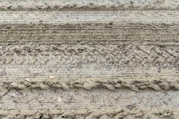Föld sáros mező felirat minta kosz Stock fotó © prill