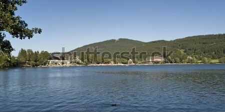 Titisee Stock photo © prill