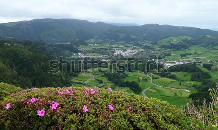 panoramic scenery at the Azores Stock photo © prill