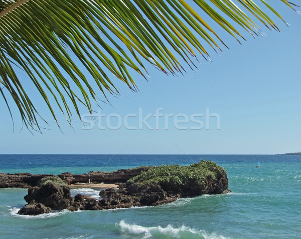 Dominican Republic coastal scenery Stock photo © prill