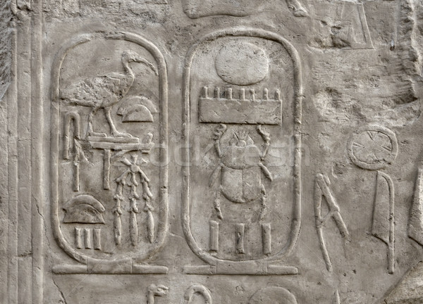 relief at Luxor Temple in Egypt Stock photo © prill