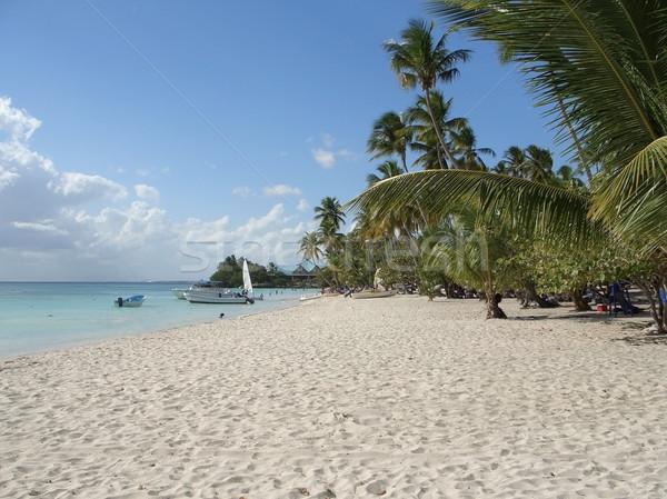 Dominican Republic Stock photo © prill