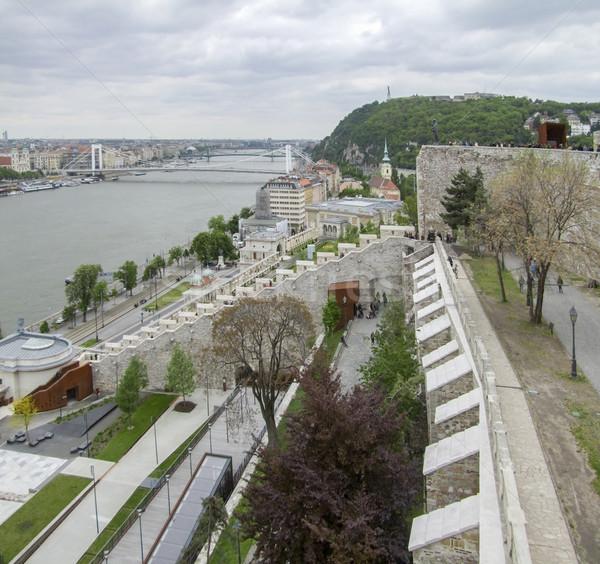 Buda Castle in Budapest Stock photo © prill