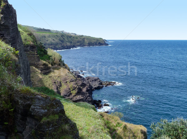 Azores seaside scenery Stock photo © prill