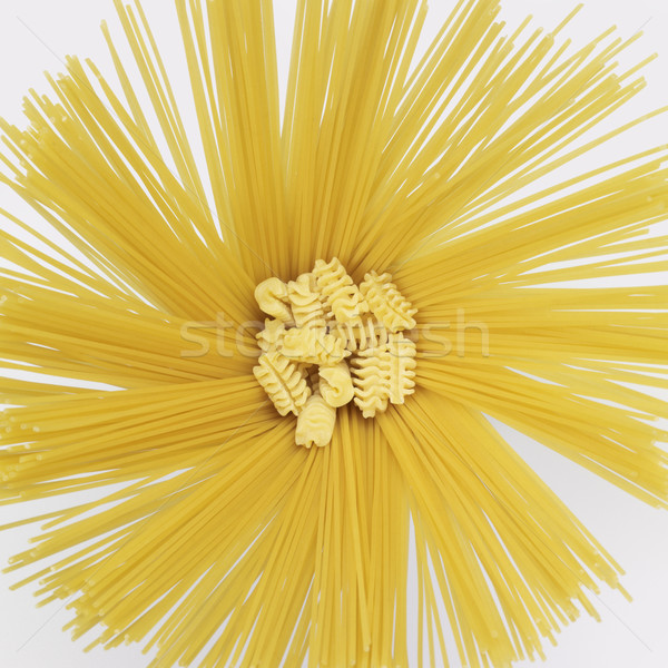 radial spaghetti and radiatori Stock photo © prill
