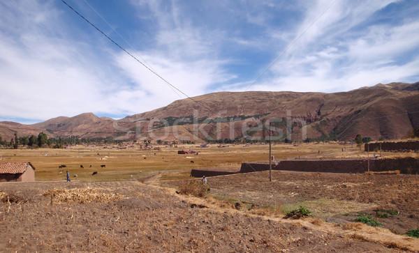 Stock fotó: Tó · vidéki · díszlet · körül · Peru · dél-amerika