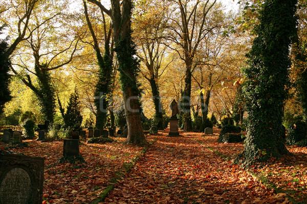 Idyllisch najaar kerkhof kleurrijk landschap hal Stockfoto © prill