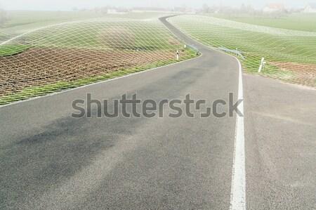 small rural road Stock photo © prill